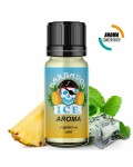BARBADOS ICE SUPREM-E AROMA CONCENTRATO 10ML