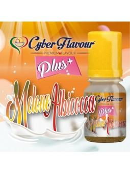 CYBER FLAVOUR - MELONE/ALBICOCCA PLUS - AROMA CONCENTRATO 10ML