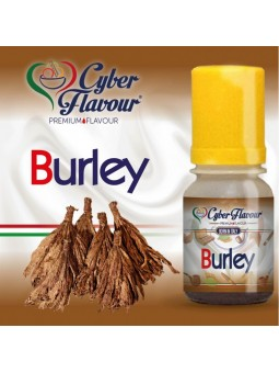 CYBER FLAVOUR - AROMA CONCENTRATO 10ML - BURLEY