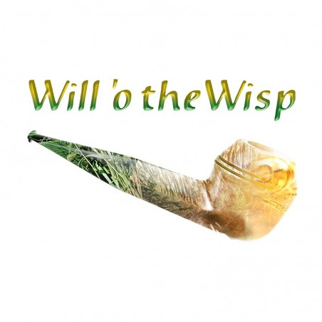 SIGNATURE WILL 'O THE WISP Azhad's Elixirs AROMA CONCENTRATO 10ML